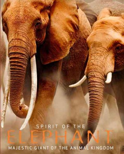 Spirit of the Elephant: Majestic Giant of the Animal Kingdom: Davies, Gill