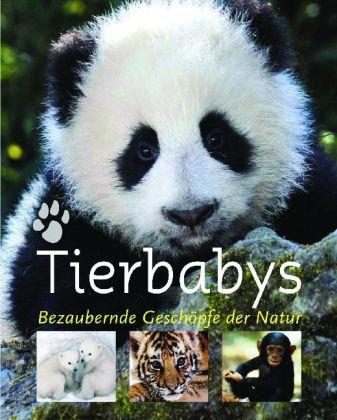 9781407527604: Tierbabys: Bezaubernde Geschöpfe der Natur
