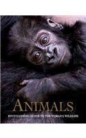 9781407543253: Animals: Encyclopedic Guide to the World's Wildlife