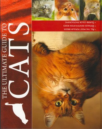 The Ultimate Guide to Cats: Candida Frith-Macdonald