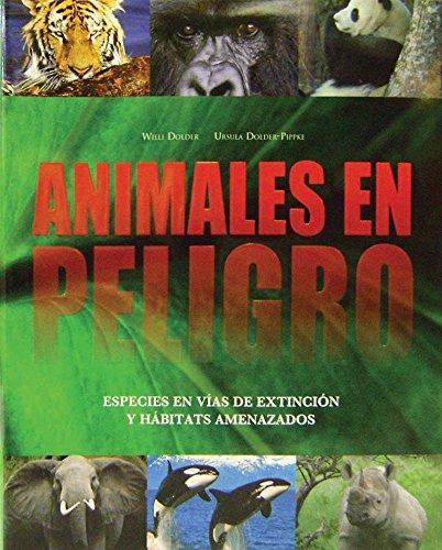 9781407556956: Animales En Peligro