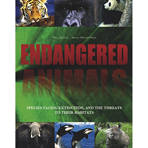 9781407556970: Endangered Animals: Species Facing Extinction and the Threats to Their Habitats