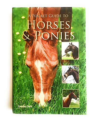 9781407585147: A Pocket Guide to Horses & Ponies