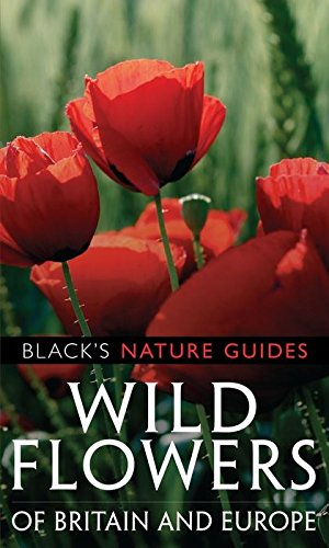 9781408101537: Wild Flowers of Britain and Europe (Black's Nature Guides)