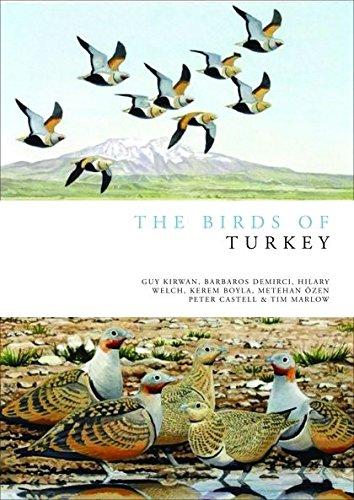 Birds of Turkey (Helm Field Guides): Welch, Geoff