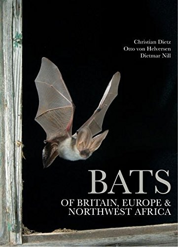 9781408105313: Bats of Britain, Europe and Northwest Africa