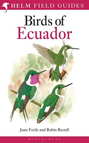 9781408105337: Birds of Ecuador (Helm Field Guides)