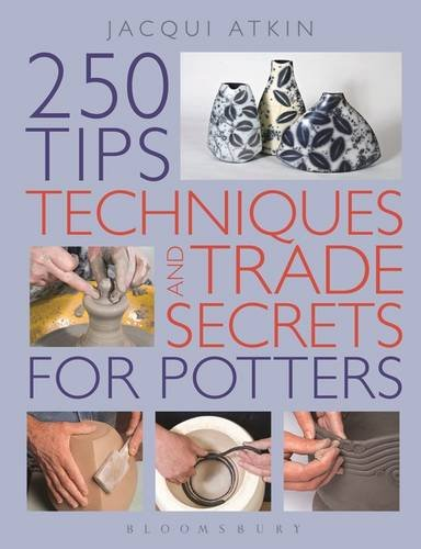 9781408110188: 200 Tips, Techniques and Trade Secrets For Potters