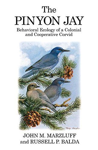 9781408136935: The Pinyon Jay: Behavioral Ecology of a Colonial and Cooperative Corvid (Poyser Monographs)