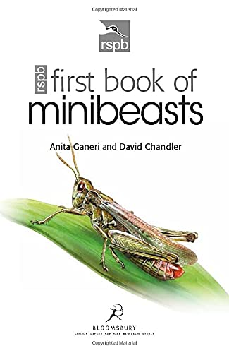 9781408137154: RSPB First Book of Minibeasts