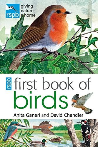 9781408137185: Rspb First Book of Birds