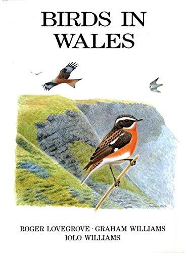 9781408137925: Birds in Wales