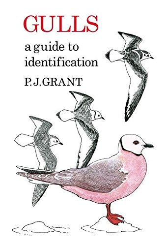 9781408138311: Gulls: A Guide to Identification (Poyser Monographs)