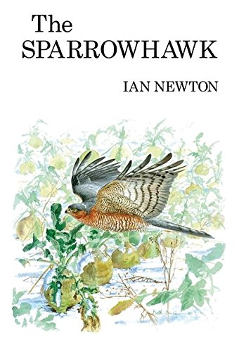 9781408138342: The Sparrowhawk (Poyser Monographs)