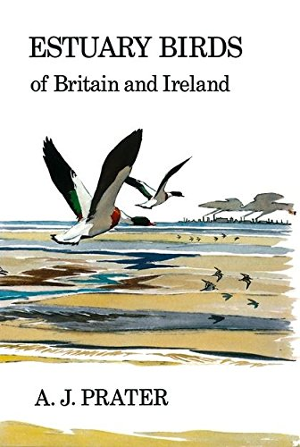Estuary Birds of Britain and Ireland (Poyser Monographs): Prater, A. J.