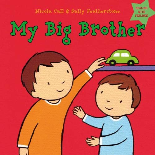 9781408163870: My Big Brother: Dealing with Feelings