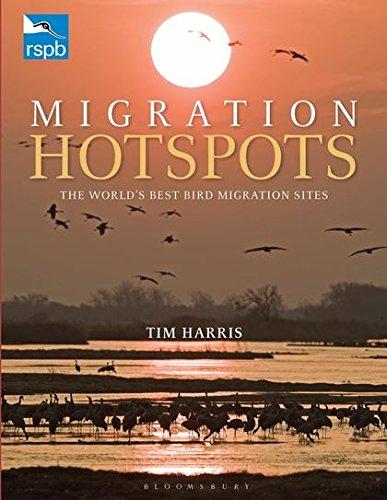 9781408171172: RSPB Migration Hotspots: The World's Best Bird Migration Sites