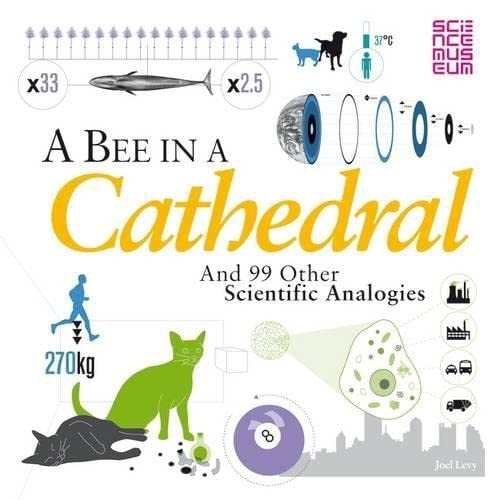 9781408171820: A Bee in a Cathedral