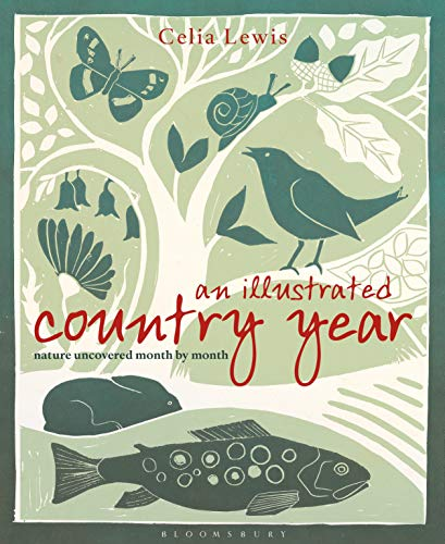 9781408181348: An Illustrated Country Year: Nature uncovered month by month