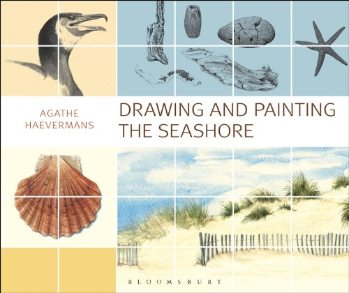 9781408184004: Drawing and Painting the Seashore