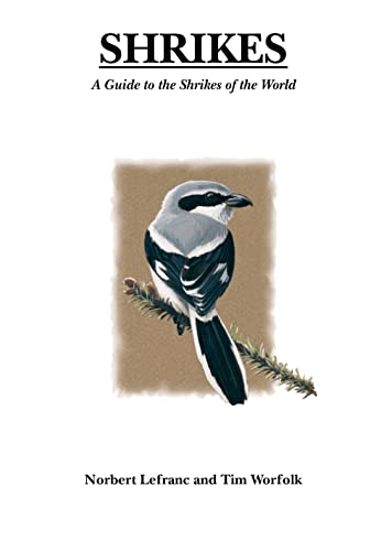9781408187562: Shrikes: A Guide to the Shrikes of the World