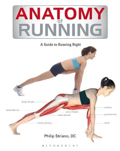 9781408187708: Anatomy of Running: A Guide to Running Right