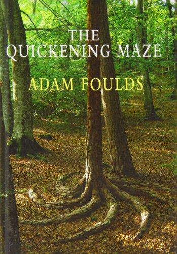 9781408461228: The Quickening Maze