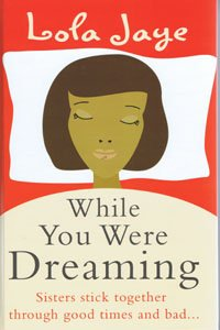 9781408487723: While You Were Dreaming