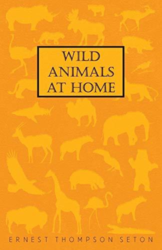 9781408697276: Wild Animals At Home