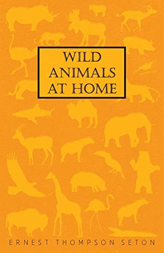 9781408697276: Wild Animals At Home