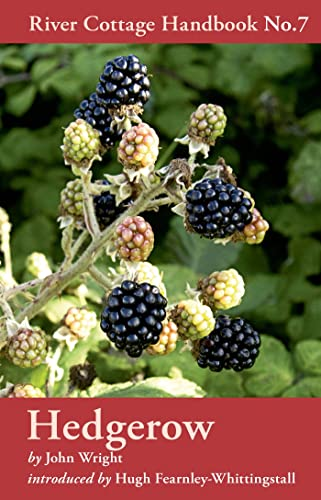 9781408801857: Hedgerow (River Cottage Handbook)