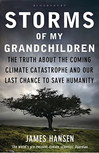9781408807460: Storms of My Grandchildren: The Truth about the Coming Climate Catastrophe and Our Last Chance to Save Humanity