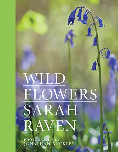 9781408813942: Sarah Raven's Wild Flowers: Special Edition