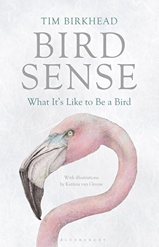 9781408820131: Bird Sense: What It's Like to Be a Bird