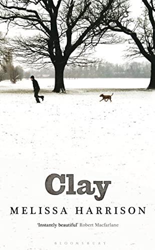 9781408826027: Clay