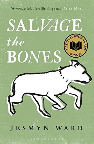 9781408827000: Salvage the Bones