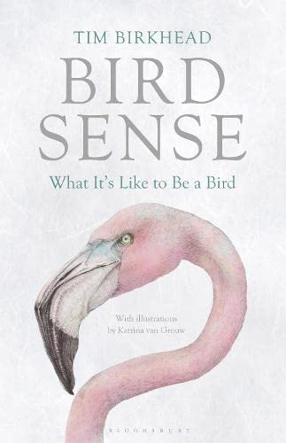 9781408830543: Bird Sense: What It's Like to Be a Bird