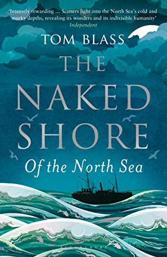9781408834039: The Naked Shore