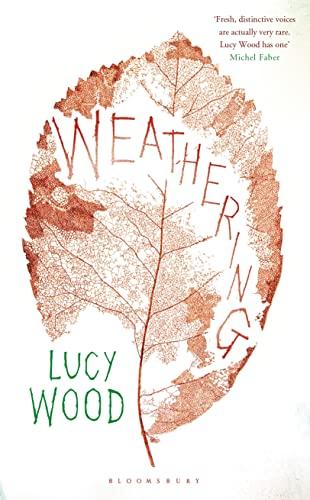 9781408840931: Weathering