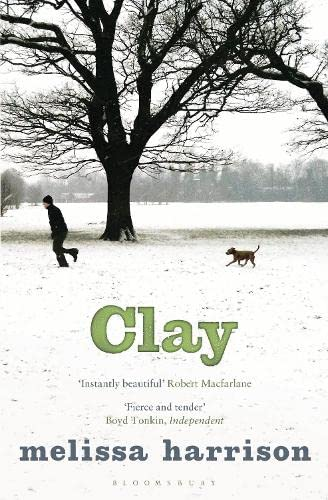 9781408842553: Clay