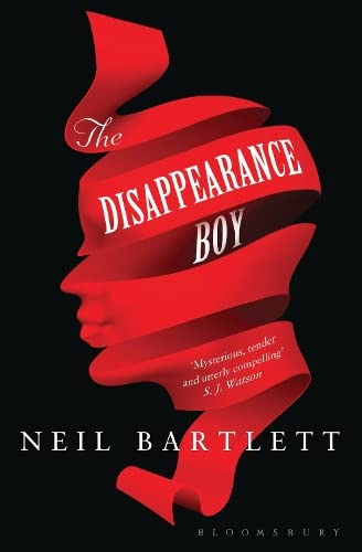 9781408850473: The Disappearance Boy
