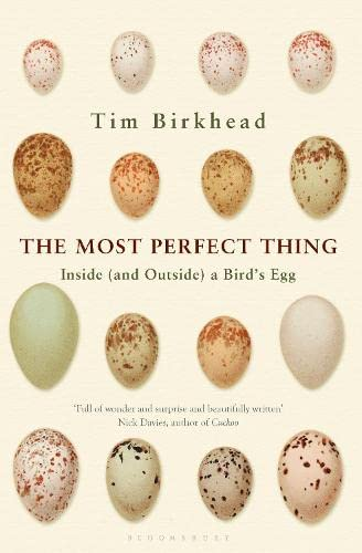 9781408851258: The Most Perfect Thing: Inside (and Outside) a Bird's Egg