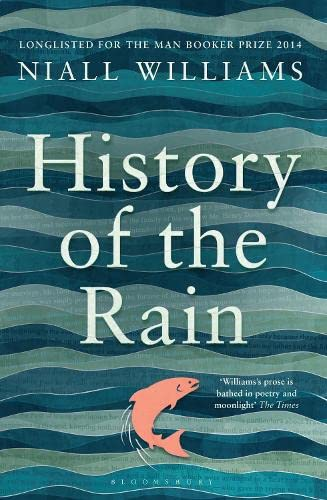 9781408852026: History of the Rain: Longlisted for the Man Booker Prize 2014