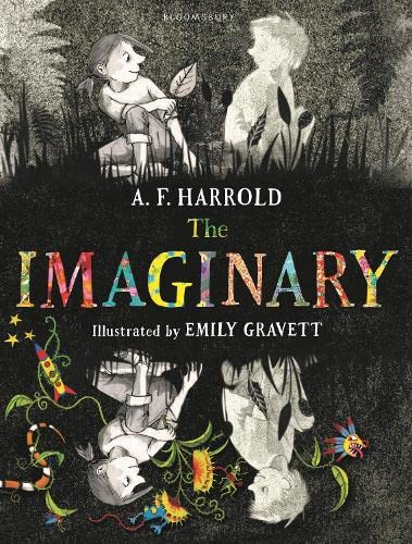9781408852460: The Imaginary