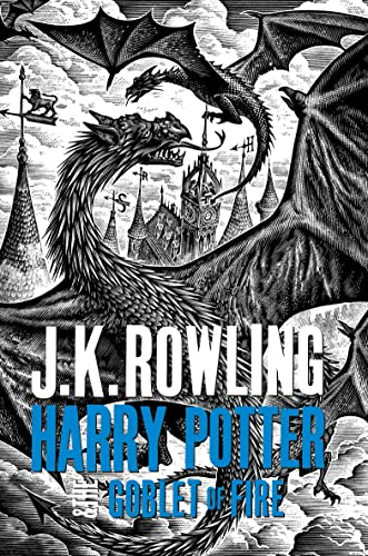 9781408865422: Harry Potter and the Goblet of Fire