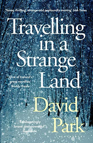 9781408892756: Travelling in a Strange Land: Winner of the Kerry Group Irish Novel of the Year