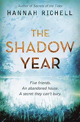 9781409127956: The Shadow Year