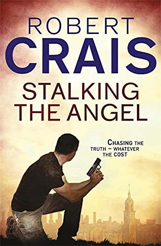 9781409136538: Stalking the Angel