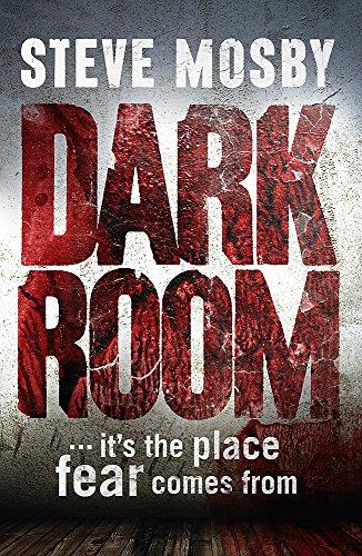 9781409137603: Dark Room