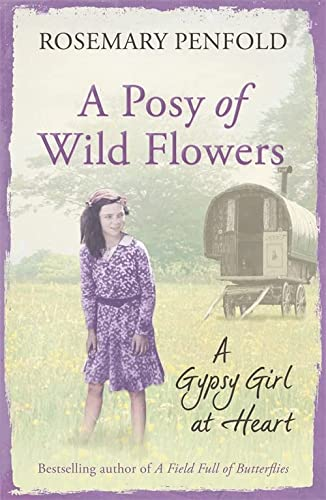 9781409138372: A Posy of Wild Flowers: A Gypsy Girl at Heart